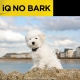 iQ No Bark - Pink
